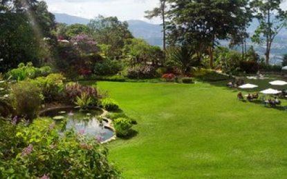 De pase por: Los Jardines Ecológicos Topotepuy